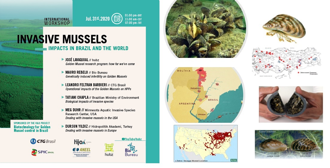 International Workshop on  Invasive Mussels _31 July 2020